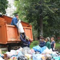 Примеры, воздействия мусора на природу